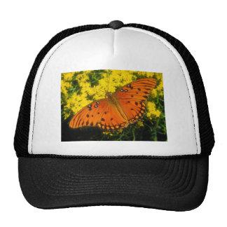 butterflies gulf fritillary hats