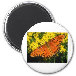 butterflies gulf fritillary refrigerator magnets