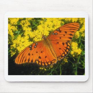 butterflies gulf fritillary mouse pad