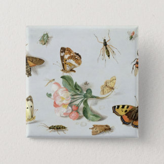 Butterflies, moths and other insects 15 cm square badge