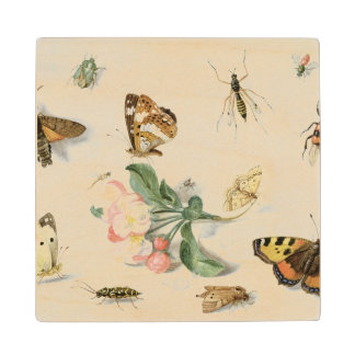 Butterflies, moths and other insects maple wood coaster
