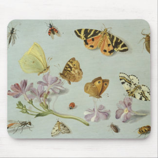 Butterflies, moths and other insects mouse mat