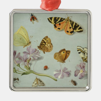 Butterflies, moths and other insects Silver-Colored square decoration
