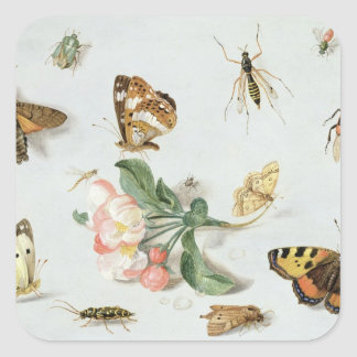 Butterflies, moths and other insects square sticker