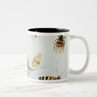 Butterflies, moths and other insects Two-Tone coffee mug