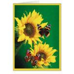 Butterflies of Summer 2 Greeting Card