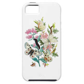 Butterflies of Summer iPhone 5 Covers