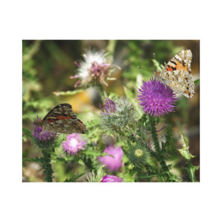 Butterflies on Flowers Photo Single Print