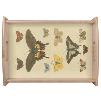 Butterflies Plate 1, 1785 Tray Serving Platters