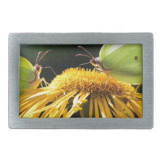Butterflies Rectangular Belt Buckles
