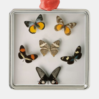 Butterflies scattered Silver-Colored square decoration
