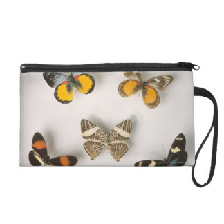 Butterflies scattered wristlet