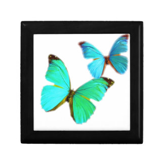 butterflies! small square gift box