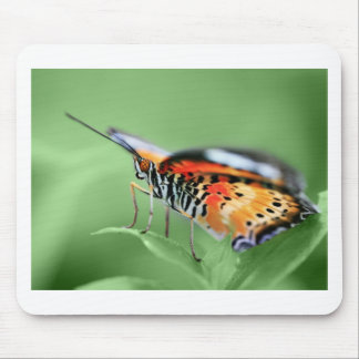 butterflies stand at attention mouse pad
