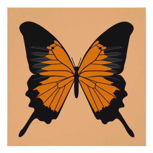 butterfly1 posters