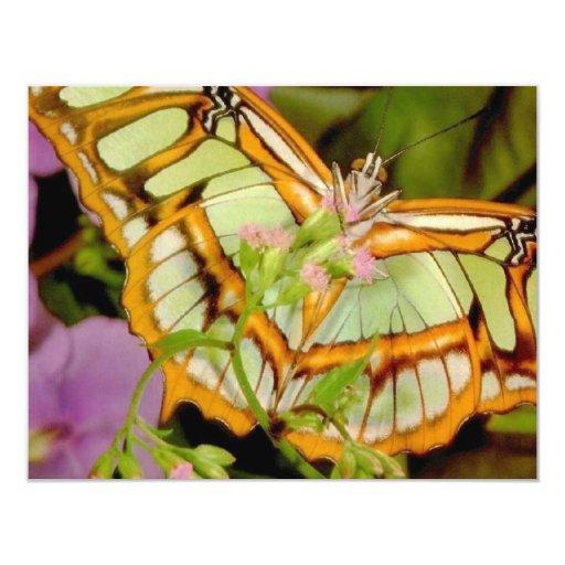 Butterfly 11 Cm X 14 Cm Invitation Card