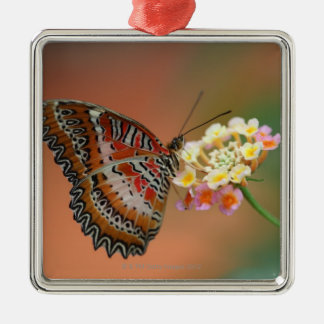 butterfly 2 Silver-Colored square decoration