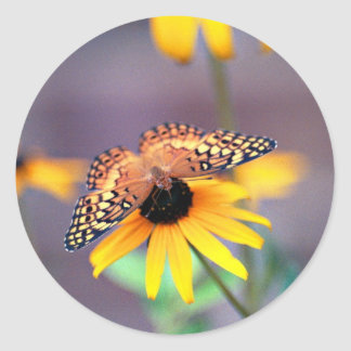 butterfly 3 classic round sticker