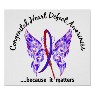 Butterfly 6.1 Congenital Heart Defects Poster