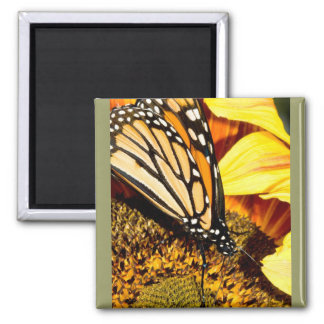butterfly abstract square magnet