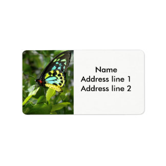Butterfly adress labels