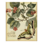 Butterfly and Dragonfly with Red Flowers Poster