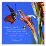 Butterfly and Flower Phillipians 4:8 Scripture Photo