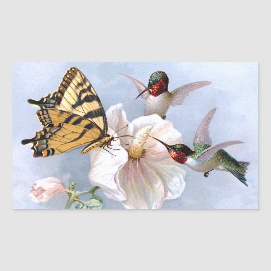 Butterfly and Hummingbirds Rectangular Sticker