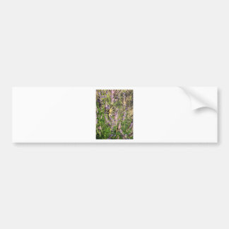 Butterfly and Lavender Bumper Sticker