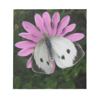 Butterfly and Pink Flower Notepad