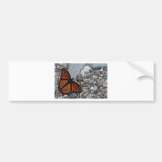 Butterfly and Stones Bumper Sticker