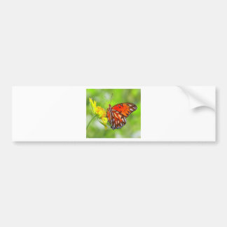 Butterfly and Wildflower Photo Bumper Sticker