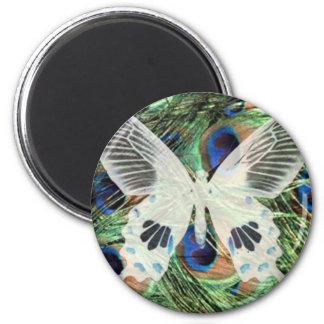 Butterfly art refrigerator magnets