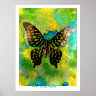 Butterfly Awakening Poster