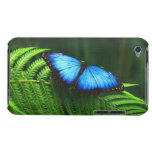 butterfly barely there iPod cover