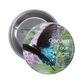 Butterfly Beauty Pin Button
