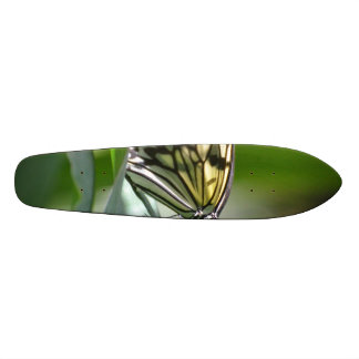 Butterfly Beauty Skate Board Deck