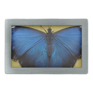 Butterfly Belt Buckle