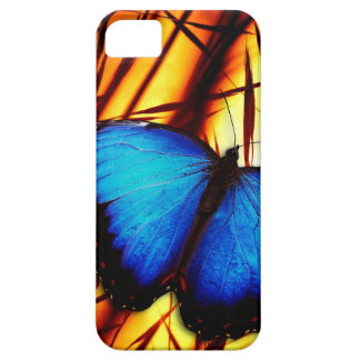butterfly blue wing wings flight sunset colorful iPhone 5 covers