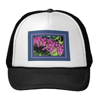 Butterfly Bush Cap