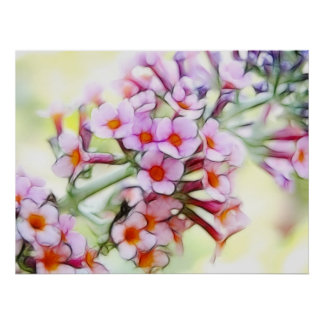 Butterfly Bush - Delicate and Dreamy Poster