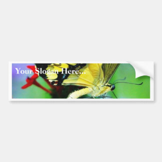 Butterfly Butterflies Wings Bumper Sticker