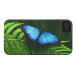 butterfly Case-Mate iPhone 4 case