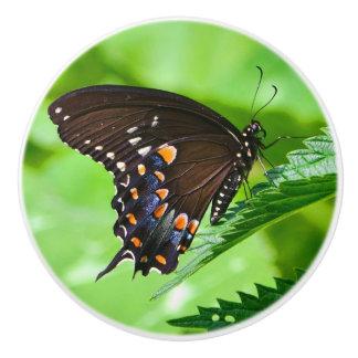 Butterfly Ceramic Knob