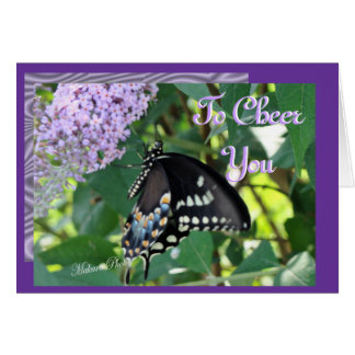 Butterfly Cheer-customize Greeting Cards