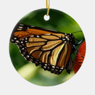 Butterfly close up christmas ornament