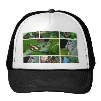 Butterfly Collage Trucker Hats