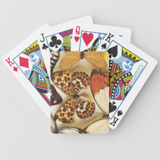 Butterfly collection bicycle playing cards