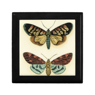 Butterfly Collection by Chariklia Zarris Keepsake Boxes