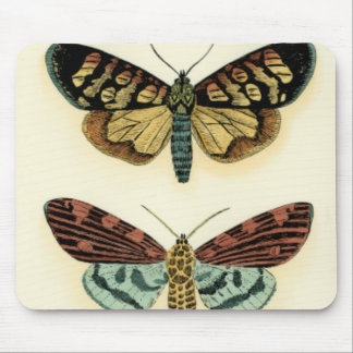 Butterfly Collection by Chariklia Zarris Mouse Mat